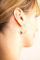 Clownfish earrings image